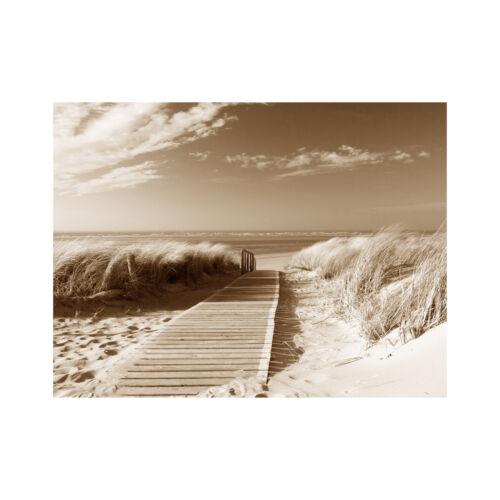 Nordseestrand sepia Bild Strand /& Meer  Poster Leinwand 30 cm*40 cm 301
