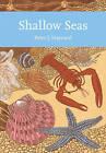 Shallow Seas by Peter J. Hayward (Paperback, 2016)