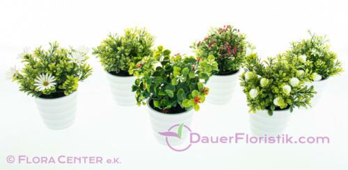 Grünpflanzenmix im Topf mit Blüten 6er Set künstlich 20 cm Kunstpflanzen weiß