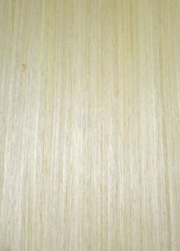 Maple composite wood veneer 48