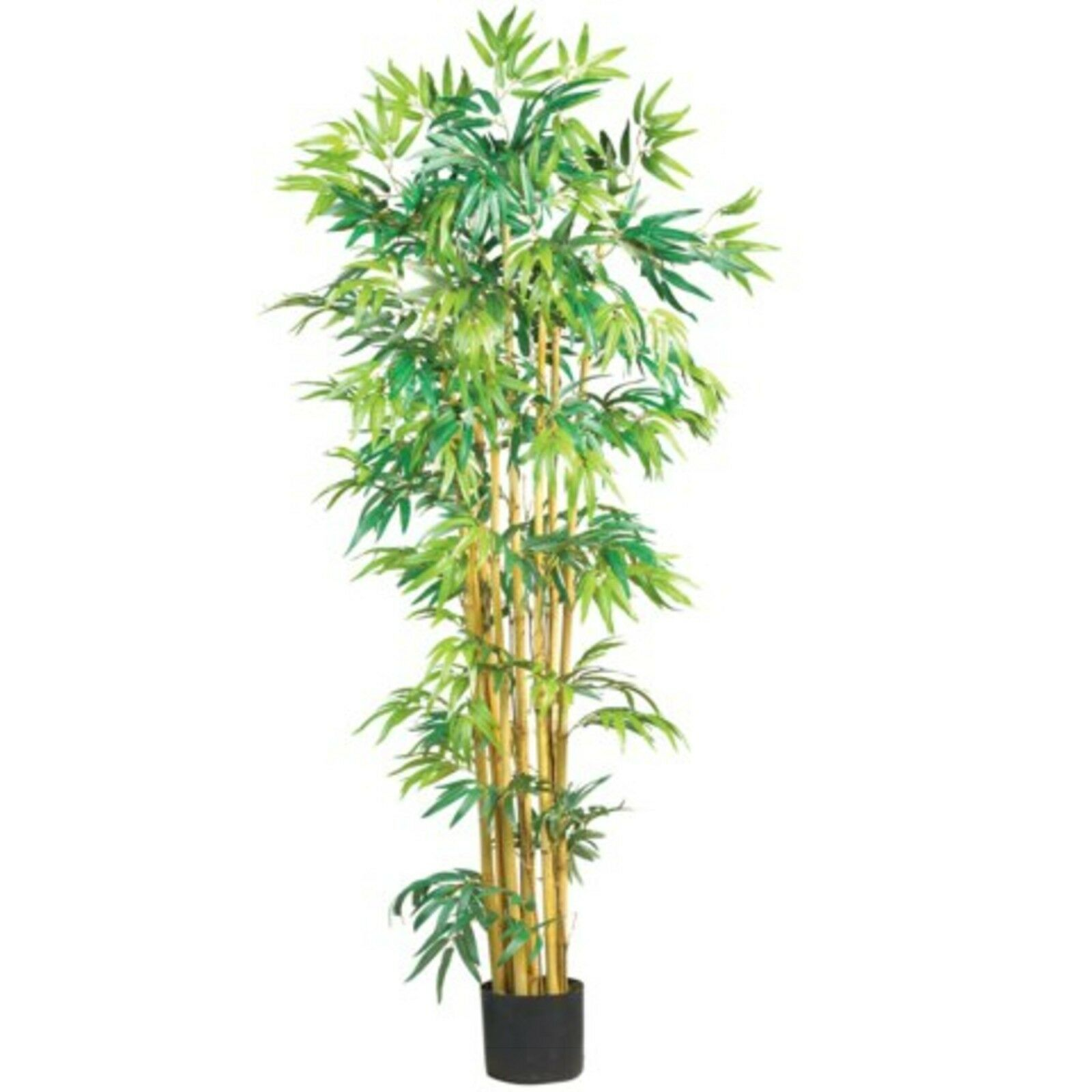 Decorative Natural Looking Artificial 5' Asian Multi Bambusa Bamboo Tree Plants