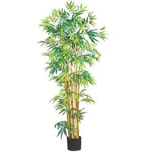 Decorative Natural Looking Artificial 5 Asian Multi Bambusa