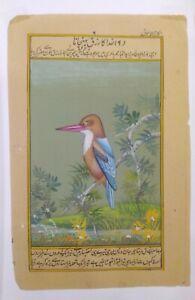 Hand-Painted-King-Fisher-Bird-Miniature-Painting-India-Artwork-Paper-Nature-art