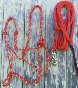 Rope Halter /& 12ft Lead with Loop in Rainbow Colour Choice of Size for Halter