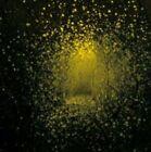 Burst Apart by The Antlers (New York) (CD, Jun-2011, Transgressive)