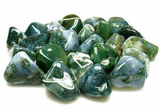 TUMBLED - (2) MED/LG MOSS AGATE Crystals w/Description Card- Healing Stone Reiki