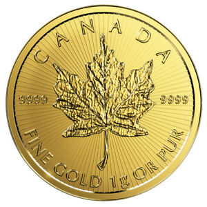 1-Gramm-Gold-Maple-Leaf-2019-Goldmuenze-999-9-im-Blister-aus-Maplegram25