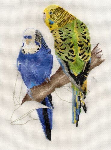 Budgerigars//Budgies counted cross stitch kit or chart 14s aida