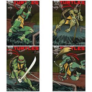IDW-Mexico-Teen-Mutant-Ninja-Turtles-1-Kevin-Eastman-and-Dan-Duncan-Variant-Set
