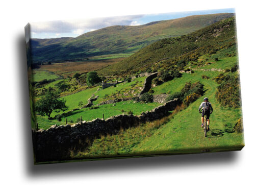 Mountain Biking Near Barmouth Wales Giclee Canvas Picture Art