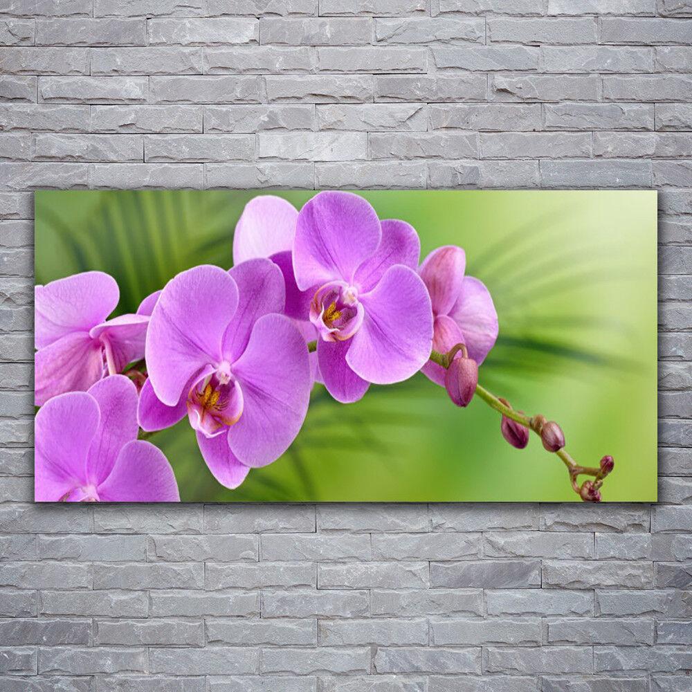Photo sur toile Tableau Image Impression 120x60 Bâtiments Fleurs