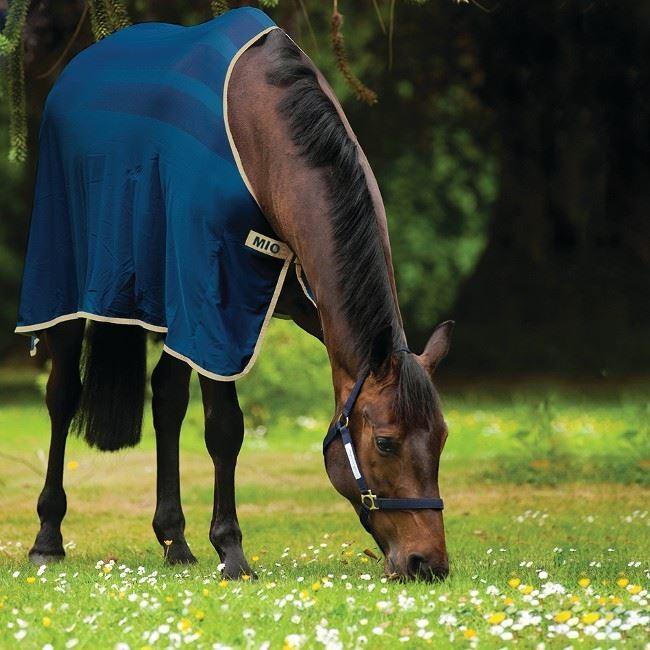 Horseware Ireland Mio Skrim Cooler ACSS21