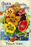 1899 Cole's Garden Vintage Flowers Seed Packet Catalogue Advertisement Poster