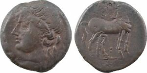 Zeugitane-Carthage-grand-bronze-215-208-14