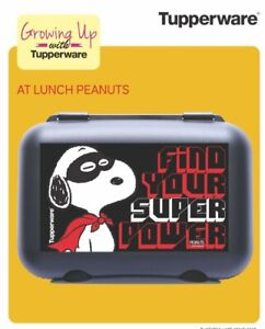 TUPPERWARE-LUNCH-BOX-WITH-CARTOON-CHARACTERS-FOR-KIDS-AIR-amp-WATER-TIGHT