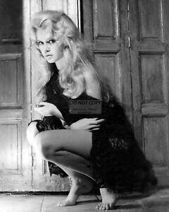 BRIGITTE BARDOT ACTRESS /& INTERNATIONAL SEX-SYMBOL  8X10 PUBLICITY PHOTO AZ897