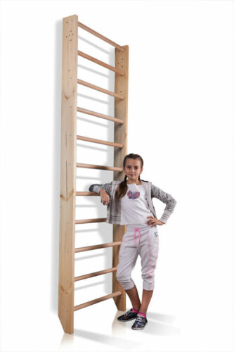 Trainieren Turnwand Sprossenwand Kletterwand Gymnastik Sport Sprossenleiter Gym