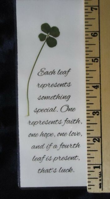 Real Genuine Four 4 Leaf Clover Laminated Lucky Charm Bookmark Shamrock (26)