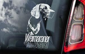 Weimaraner-On-Board-Auto-Finestrino-Adesivo-Vorstehhund-Cane-Firmare-V04