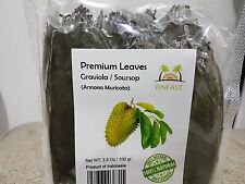 FINFAST Air-dried Guanabana/ Soursop / Graviola / Guyabano Leaves (250+ Leaves)