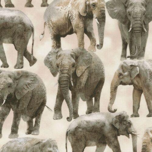 100/% Cotton Fabric Timeless Treasures Safari Elephants Animals African Indian