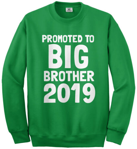 Promoted To Big Brother 2019 Youth Sweatshirt Expecting Baby Gift