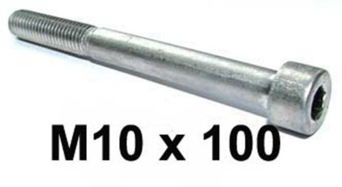 M10 x 100 Allen Bolt Socket Cap x2 M10 x 100 Stainless Steel Socket Capscrews