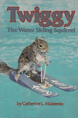 Vtg Twiggy Water Skiing Squirrel Chuck Lou Ann Best Novelty Act Florida Poster