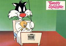 Tweety und Sylvester ORIGINAL Aushangfoto ZEICHENTRICK / ANIMATION