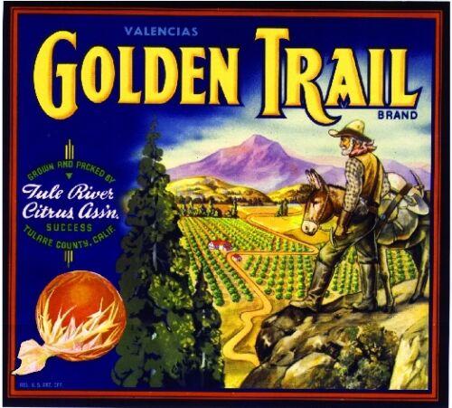 Success Golden Trail Mountain Man #2 Orange Citrus Fruit Crate Label Art Print