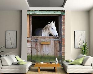Papier peint géant 2 lés, tapisserie murale déco Cheval Box réf 117