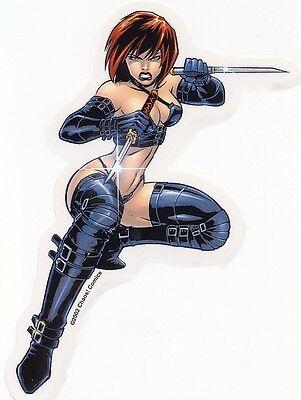 SEXY NINJA WARRIOR GIRL SUPERHERO VINYL STICKER/DECAL Chaos! Comics Chastity