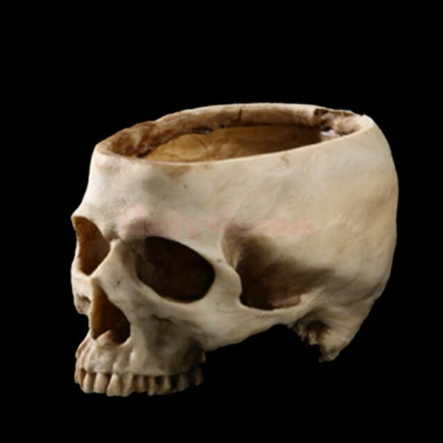 Human Skull Head Design Flower Pot Planter Container Replica Home Bar Decor