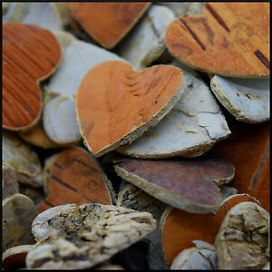 50 x birch tree bark coeurs rustique mariage venue formes décoratives artisanales-afficher le titre d`origine pwIezGeY-07214304-923889516