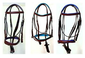 Horse-Full-Accents-Purple-Teal-Royal-Browband-Noseband-Ok-Bark-Br-English-Bridle