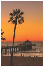 Website Password Keeper Internet Username Journal Book Logbook Sunset Palm Pier