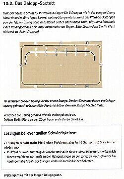 Querbach 55 Übungen Dressur//Handbuch//Ratgeber Stangenworkout für Dressurreiter