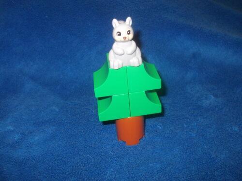 Lego Duplo Ville Wildpark Tannenbaum 1 X Eichhörnchen aus 10584 10583 10907 NEU