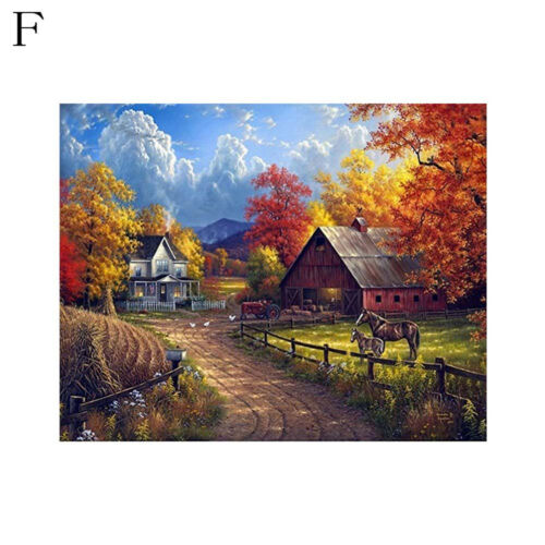 Countryside Landscape 5D DIY diamond Painting Cross Stitch full drill home ZP