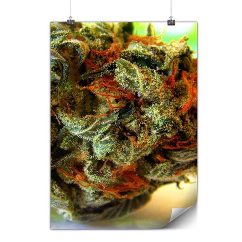 Smelly Weed Bud Rasta Matte//Glossy PosterWellcoda
