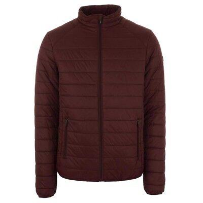 Henleys Men's Demolition Padded Coat Jacket Burgundy