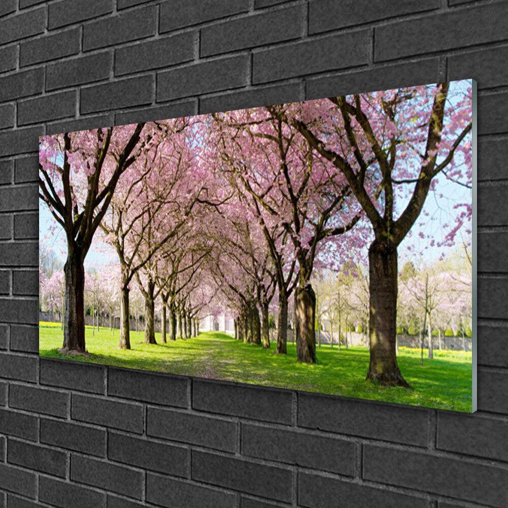 Image sur verre Tableau Impression 100x50 Nature Arbres Sentier