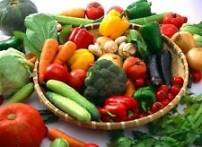 Organic Garden Survival Kit-Vegetable/Herb 5300 seed 66 kind