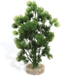 Sydeco Natural Plants Mousse Sauvage Colorée 25cm (paquet De 4) 3502733802762