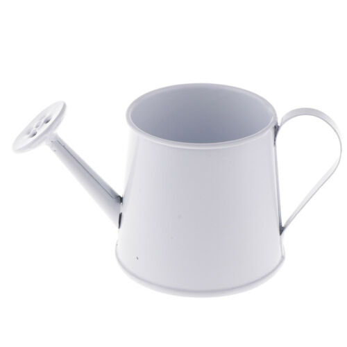 Garden Metal Flower Kettle Mini Small Water Spraying Pot Watering Can White
