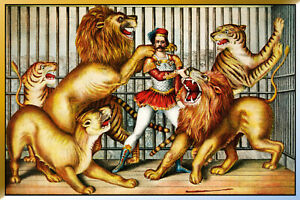 Lions-Tamer-Cage-Pancarte-en-Tole-Signe-Metal-Voute-Etain-20-X-30-cm-CC0424