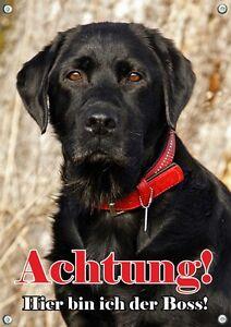 Labrador Retriever - Bouclier de porte en métal pour panneau d'avertissement de chien résistant aux intemp