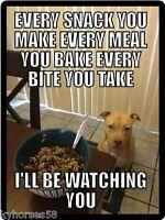 Dog Humor Pitbull I'll Be Watching You Refrigerator Magnet