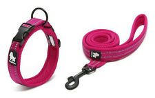 "Truelove ""Easy-On"" Padded Adjustable Reflective Dog Collar & Training Leash Set"