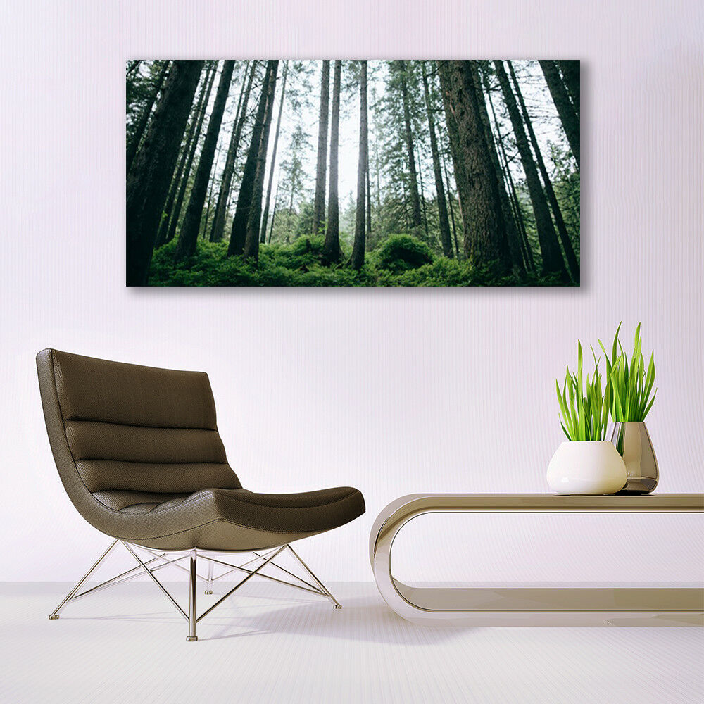 Print on Glass Wall art 140x70 Picture Picture Picture Image Forest Nature e7b9bc